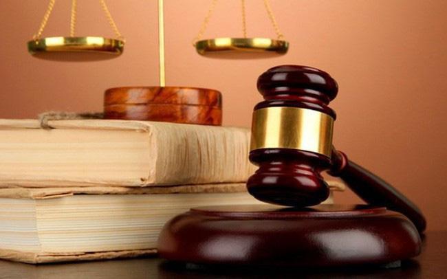 Ngành Luật vẫn chiếm ưu thế trong xã hội